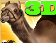 camel race game
